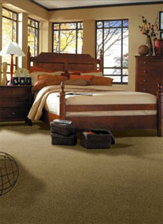 Bed Room Carpet